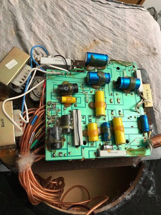 7EEBED24-930D-48C5-BF61-92CFFAFC0542.jpeg