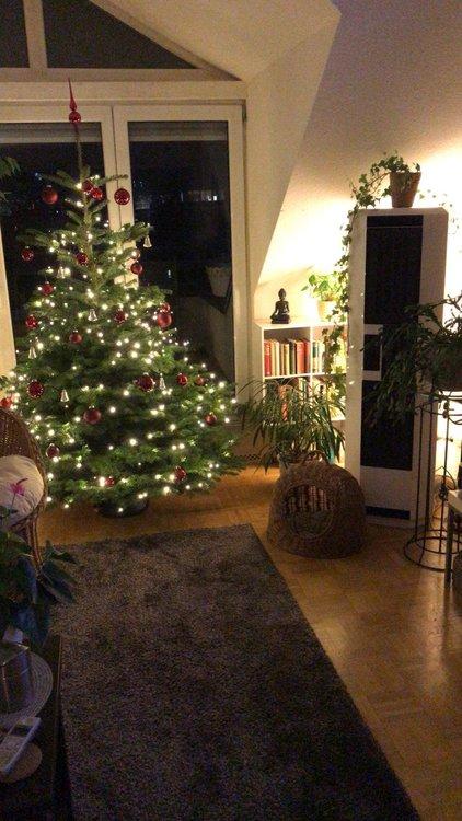 Weihnachtsbaum 20191.jpg